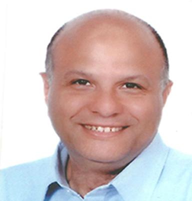 Hicham Hafez